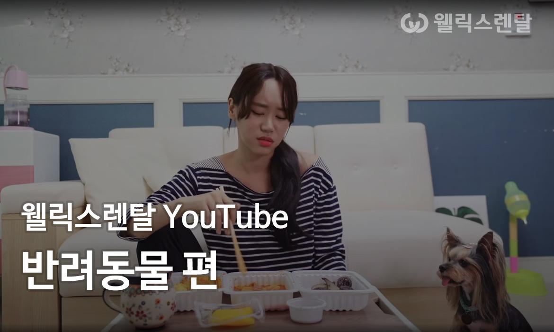 웰릭스렌탈 YouTube - 반려동물 편