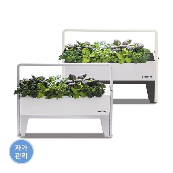 [파쯔파쯔] 가정용 LED 식물재배기 베이직